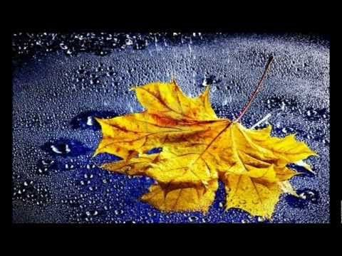 """""""Listen to the Rain"""""""