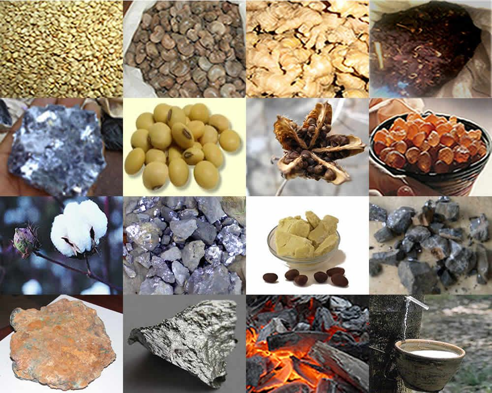 Agricultural/Mineral Commodity Export Business is a