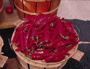 Chilivarianter Chili varianter.  Der findes over 25 forskellige overordnede arter af chili og mange hundrede sorter herunder. Langt de fleste arter er vilde chilier, mens de chili, der produceres/dyrkes er inddelt i fem arter: nemlig:      Capsicum Annuum (Herunder f.eks. sorten Jalapeños)     Capsicum Chinense (Herunder f.eks. Habanero)     Capsicum Frutescens (Herunder f.eks. sorten Tabasco)     Capsicum Baccatum (Herunder f.eks. sorten Aji Benito) og     Capsicum Pubescens (Herunder…
