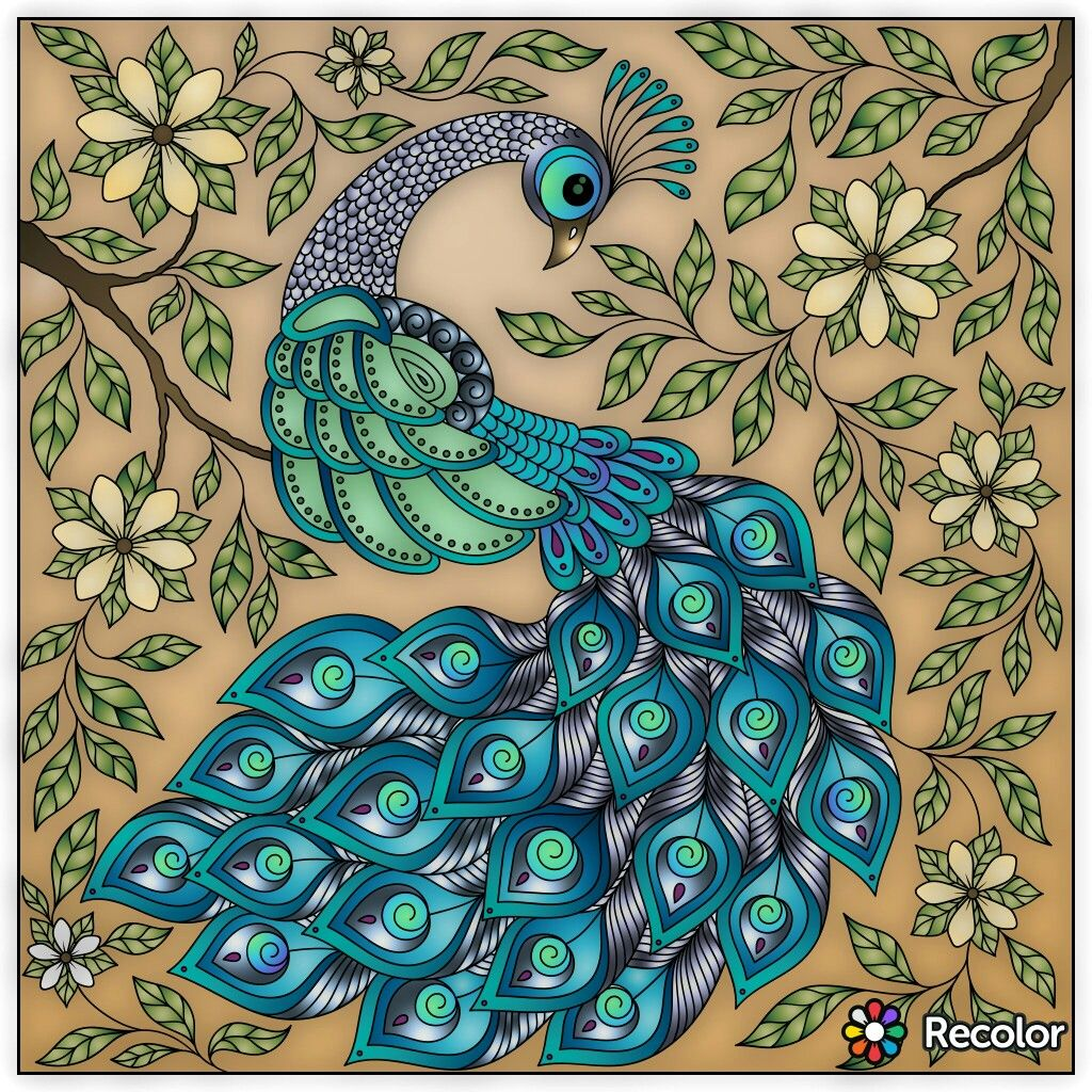 Pin by Elisabeth Quisenberry on Coloring: Peacock | Pinterest ...