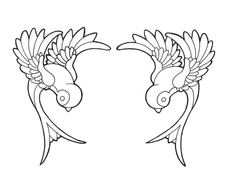Pin de Isa Virtual en Birds Designs | Pinterest | Parche, Algún día ...