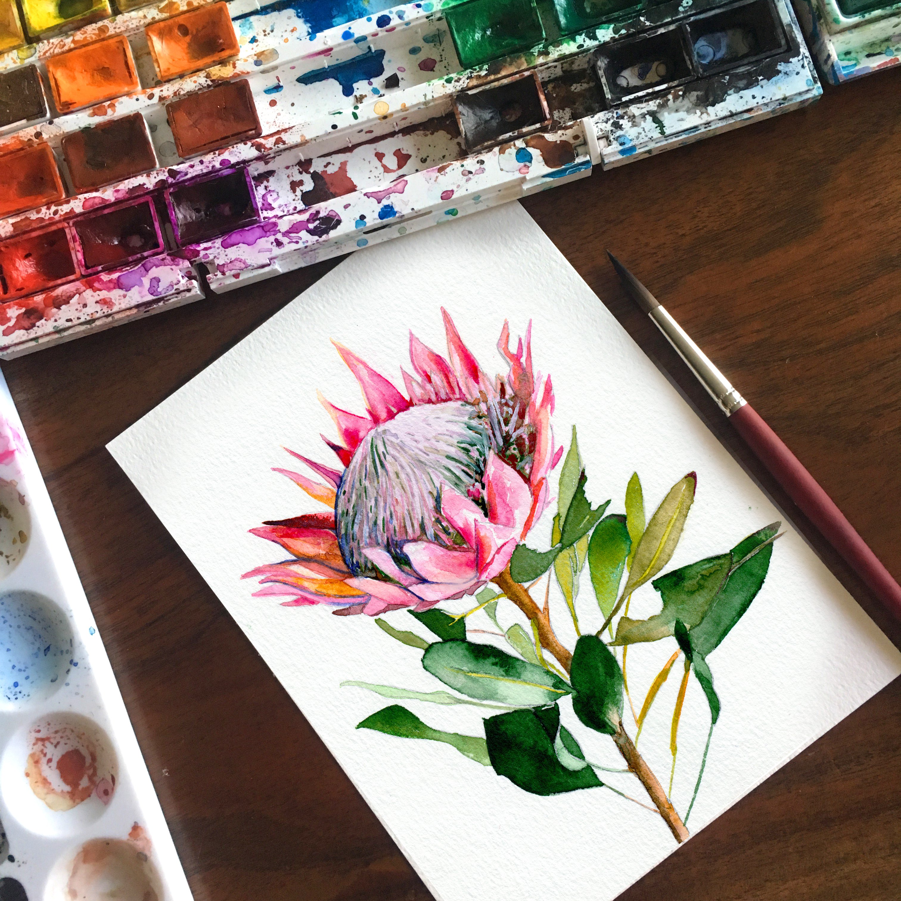 Protea Watercolor Art Print In 2018 Products Watercolor