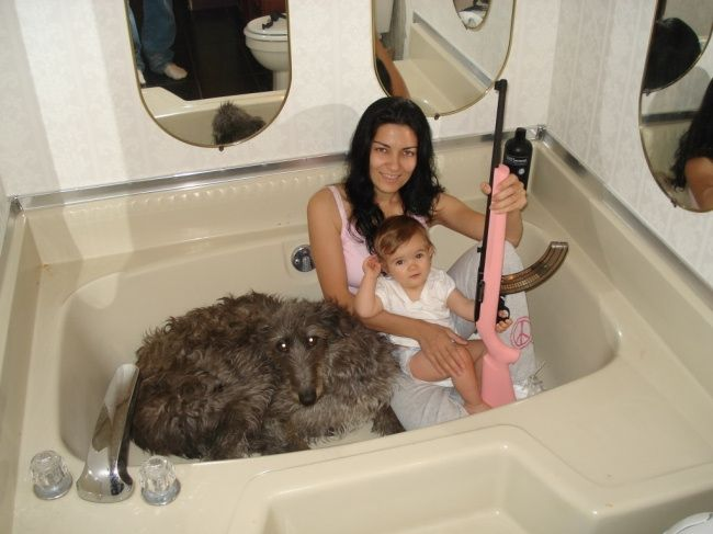creepy dog, pink gun, baby, in a tub. What is this?   Crazy, wacky ...