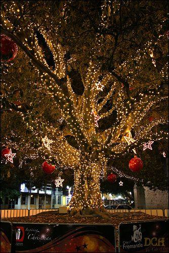 I love Christmas Christmas Pinterest Navidad, La familia y Locos - Luces De Navidad
