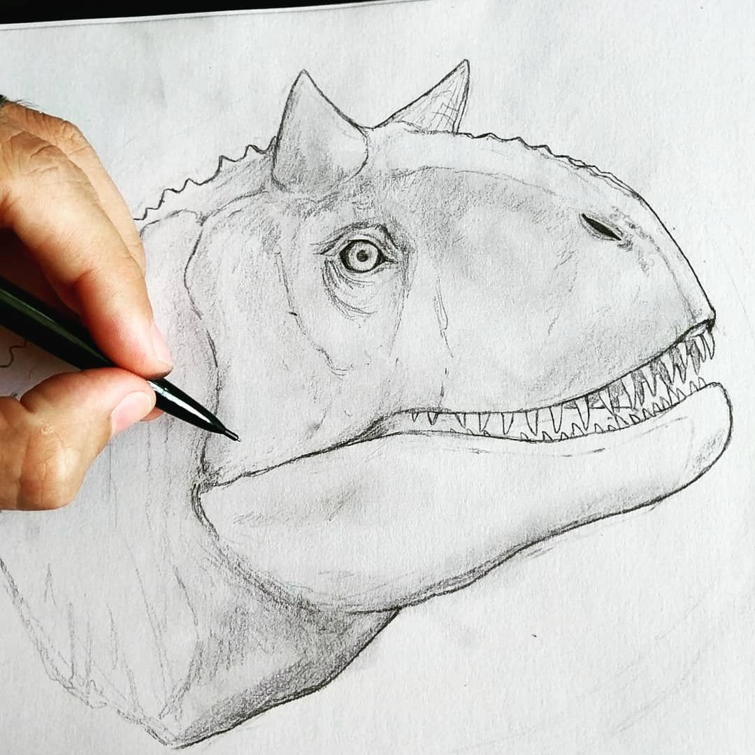 New Piece Carnotaurus Trex Jurassicworldfallenkingdom Jurassicpark Jurassic Rexy Tyrannosaurusr Dinosaur Drawing Dinosaur Sketch Velociraptor Drawing
