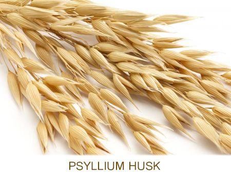 8 Benefits Of Psyllium Husk Husk Digestive Health Benefit