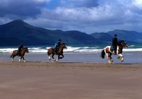 Burke's Beach Riding - Rossbeigh Beach.  Not this trip, but maybe the next one! :)