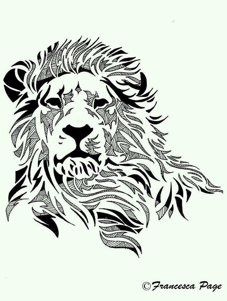 babar sher | Things to wear | Lion drawing, Lion art, Lion