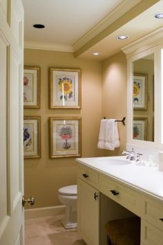 check fur down with canned lights crown molding around - Bathroom Crown Molding