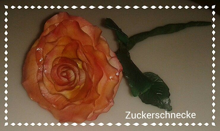 """Meine erste """"richtige"""" Rose aus Blütenpaste/ My first """"real"""" rose made of gumpaste"""