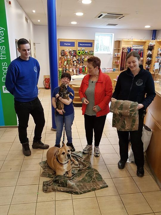 Another Visit Today To Battersea Dogs Home Old Windsor With More Dog And Cat Blankets Very Kindly Sent In From The Stat Cat Blanket Battersea Dogs Cat Tshirt