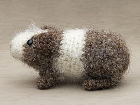 Amigurumi Guinea Pig : Finn s pick everyone should live their life the guinea pig way