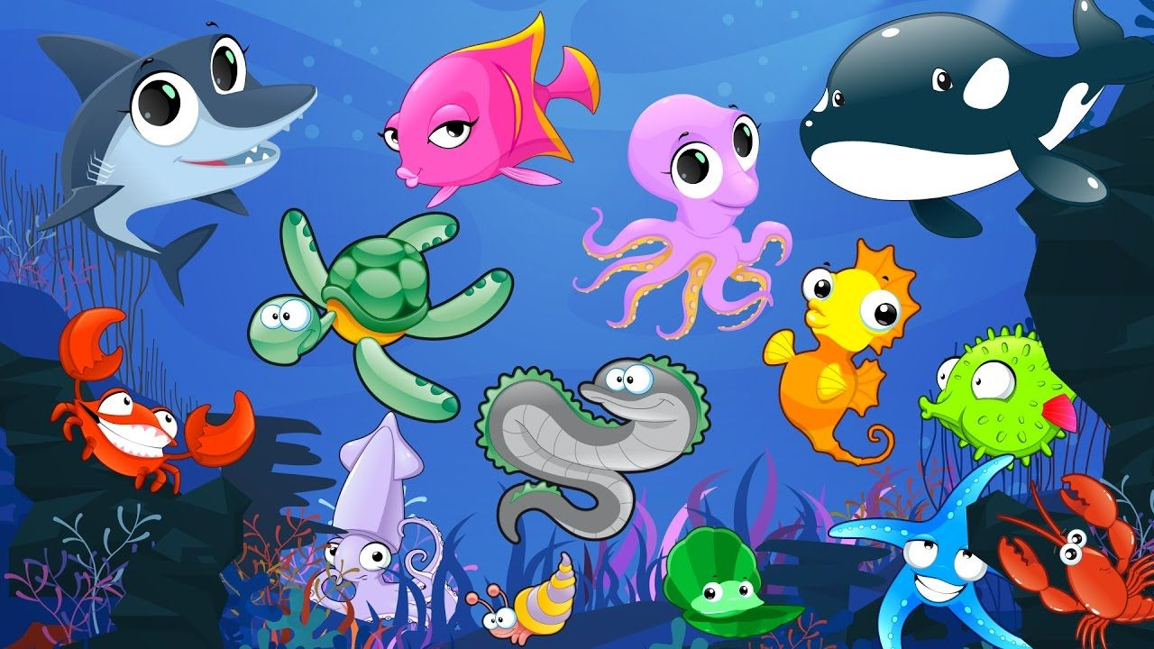 Learn Sea Animals Names and Sounds With Cartoon
