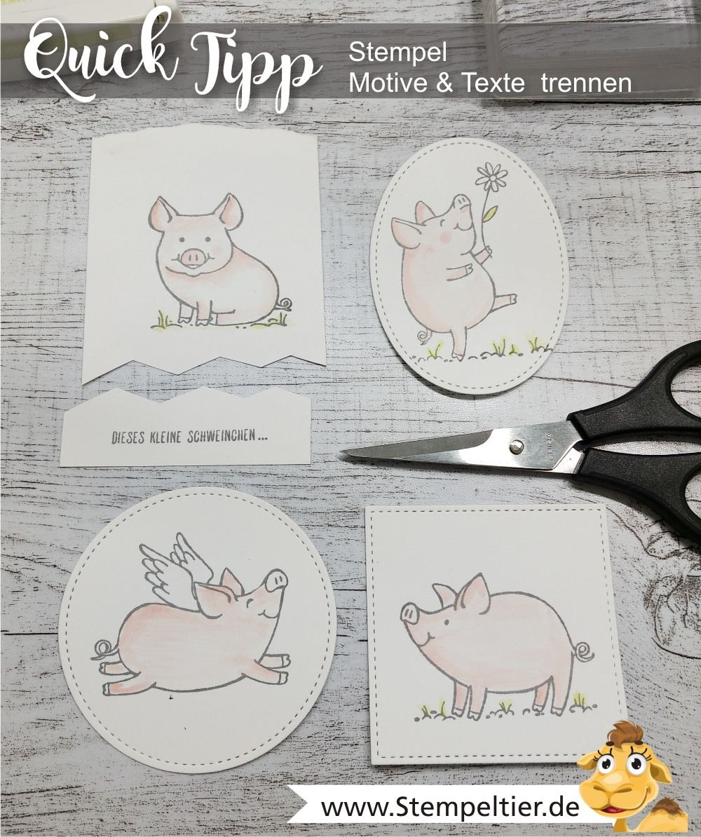 Stamps, stampin up, ideas, cards, stampin up demo, stampin up blog.