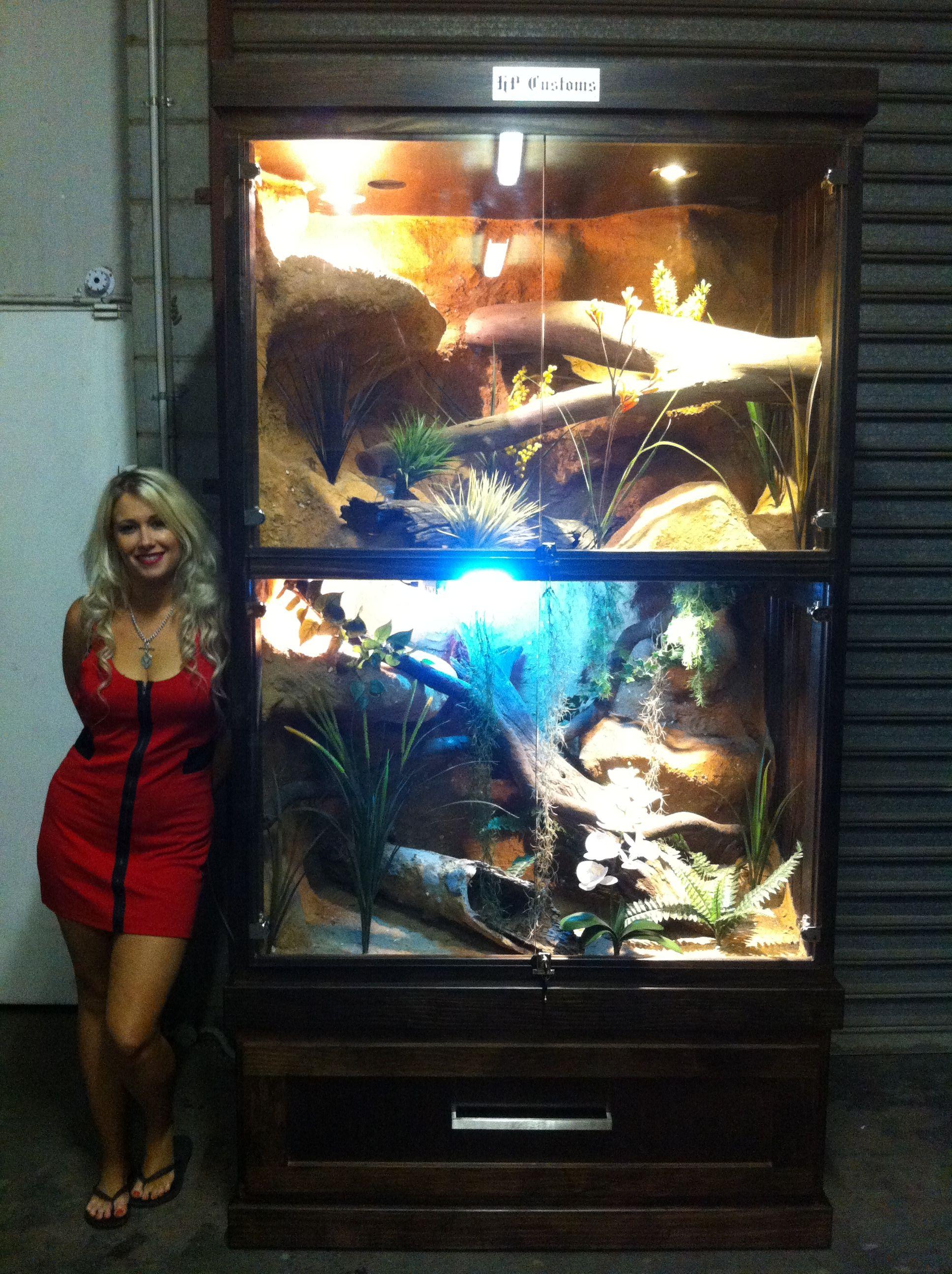 Large reptile enclosure facebookpageshpcustoms