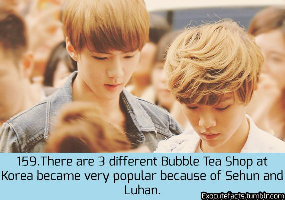 exo cute facts - HunHan