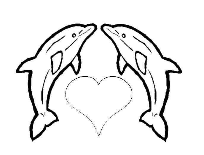 Coloriage 7 Dessin Dauphins Coloriage Dauphin Dauphin Dessin
