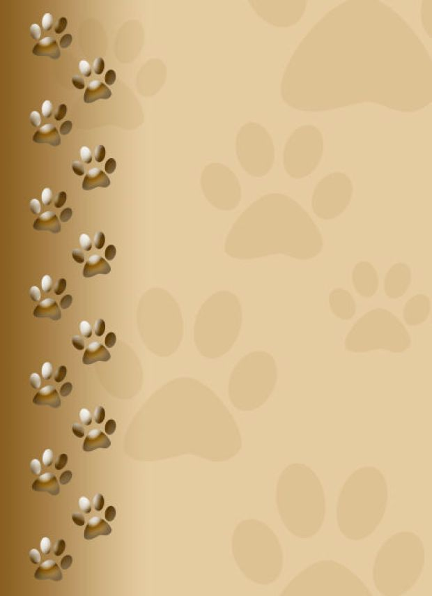 Puppy paw print wallpaper bing images paw prints in 2019 paw print background dog - Paw print wall border ...