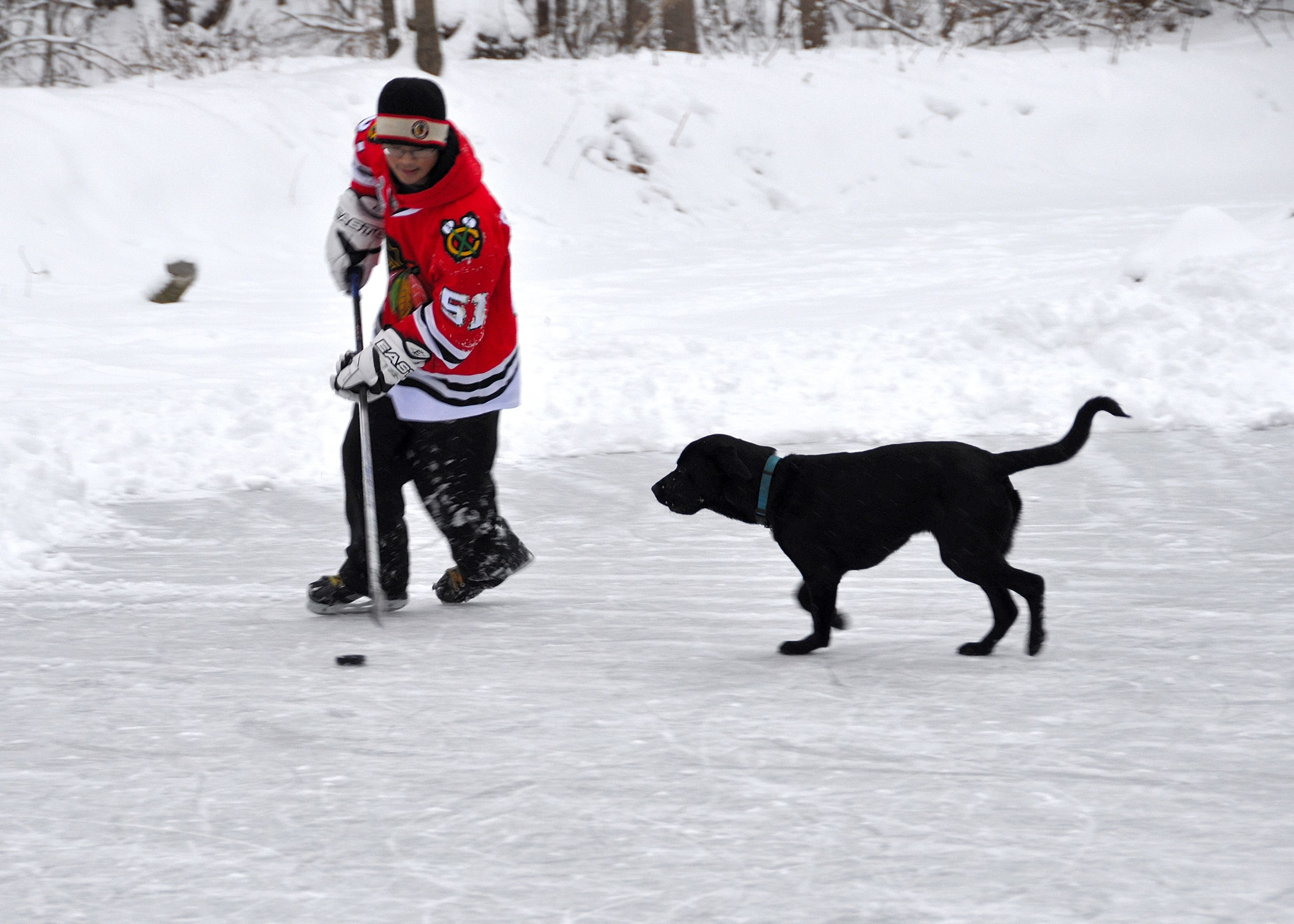 Tazer is a hockey player named after the Blackhawk's Captain