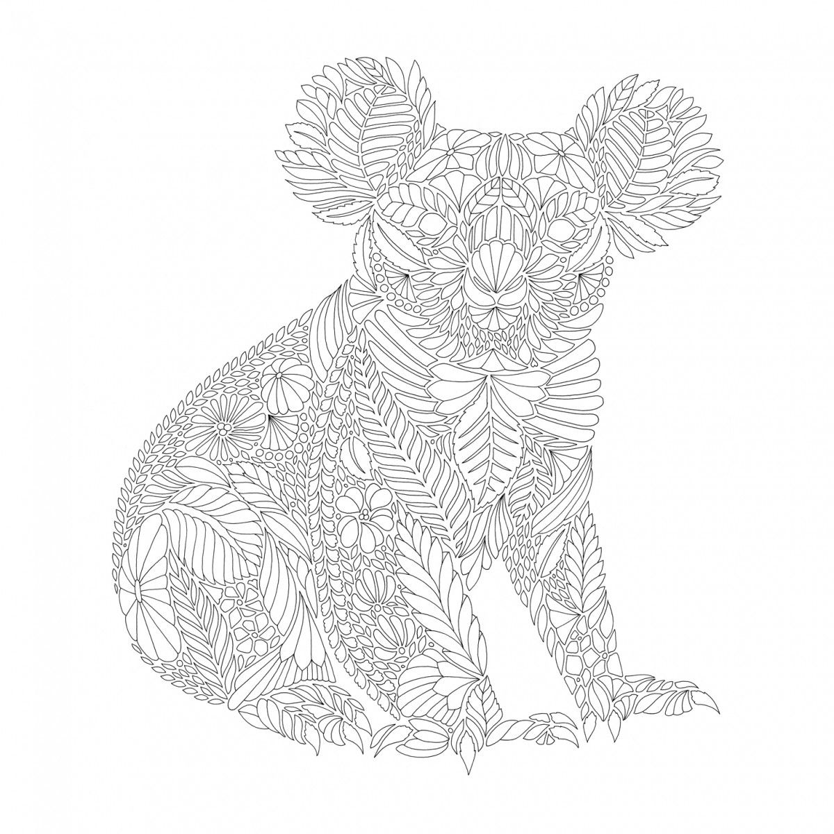 Millie Marotta Koala Birds Free Colouring Download Milliemarotta Koala Kingfishe Millie Marotta Coloring Book Mandala Coloring Pages Animal Coloring Pages [ 1200 x 1200 Pixel ]