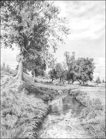 Landscapes Graphite Pencil Drawings By Diane Wright Desenhos