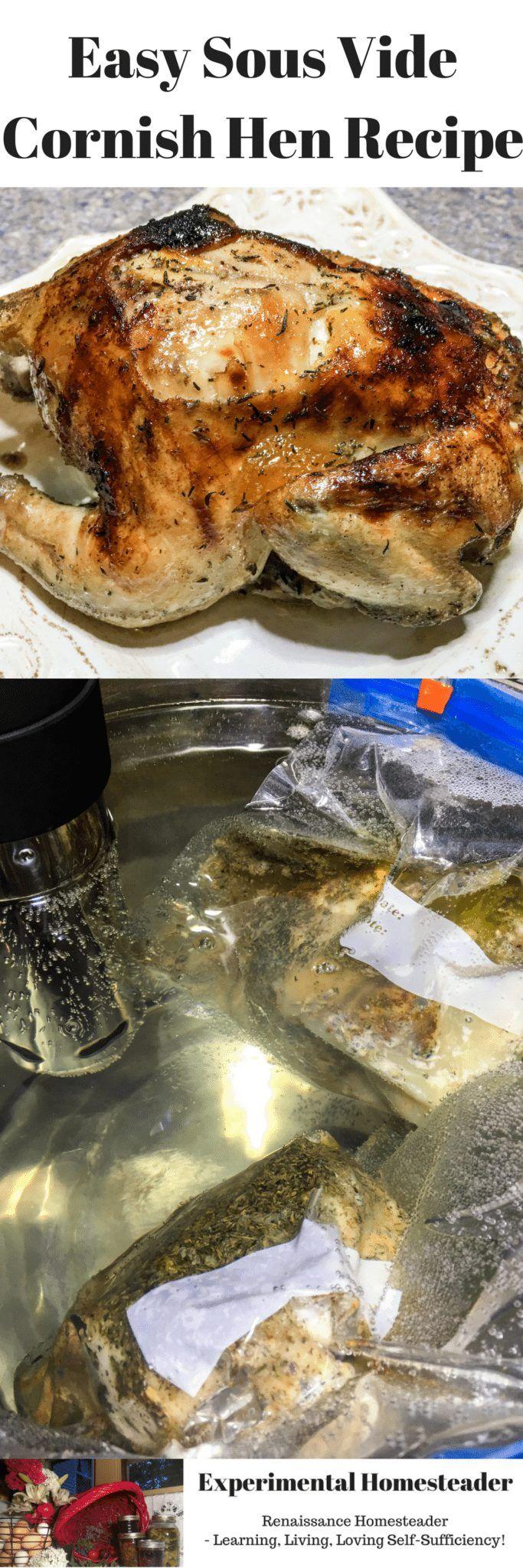 Easy Sous Vide Cornish Hen Recipe Experimental Homesteader Recipe Cornish Hen Recipe Sous Vide Recipes Sous Vide