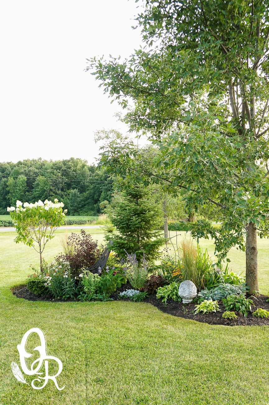 Garden landscape trees  Lovely spot in the gardenOliver and Rust Colourful flowers and