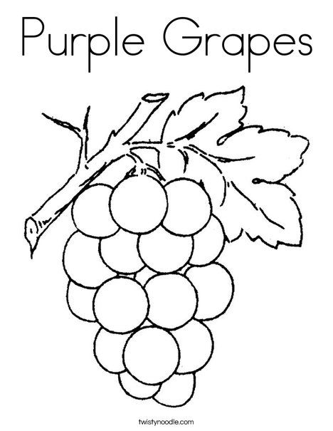 Purple grapes coloring page twisty noodle