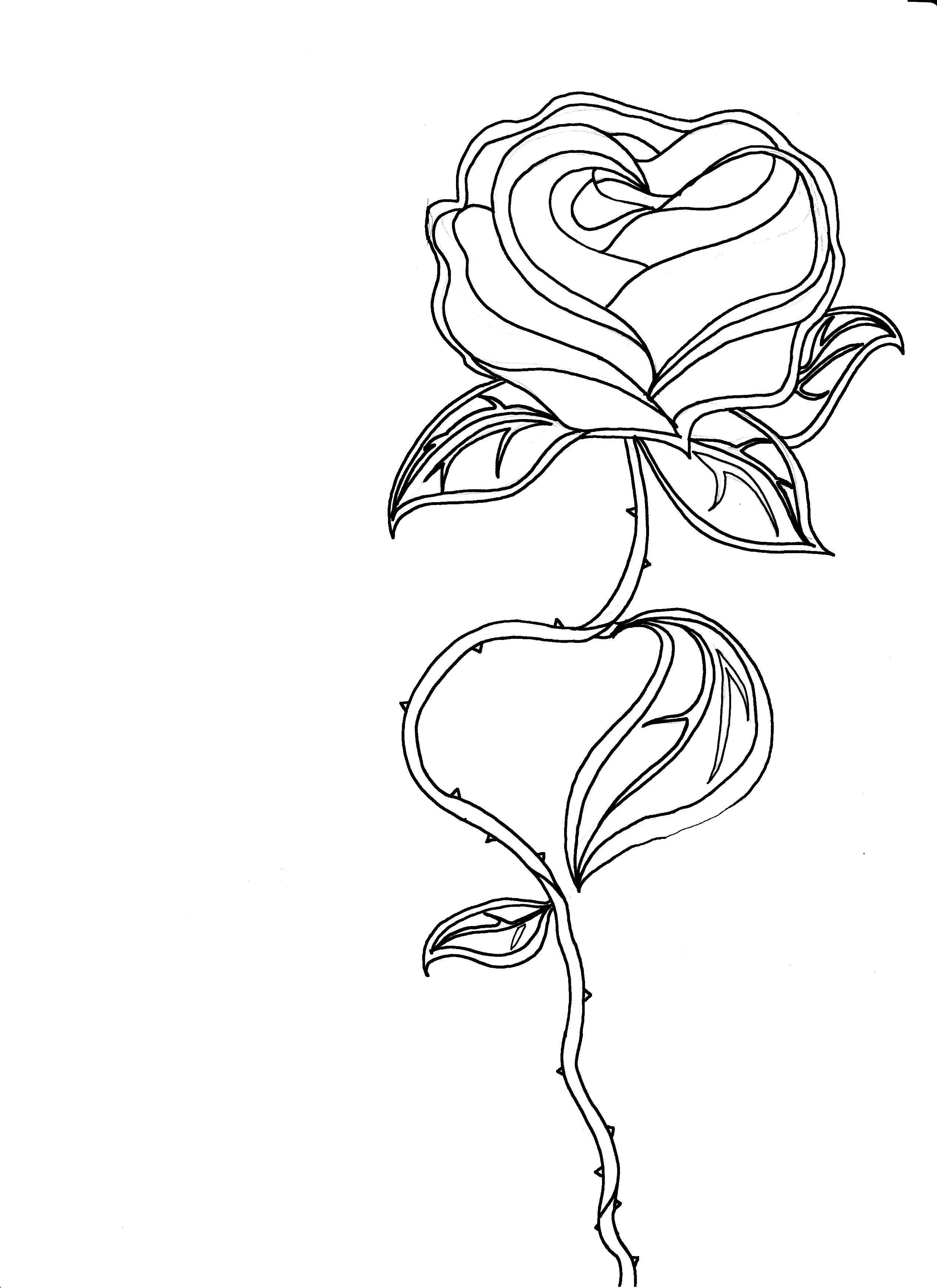 Similar Galleries Simple Flower Outline Simple Rose Outline Rose Outline Flower Outline Rose Outline Tattoo