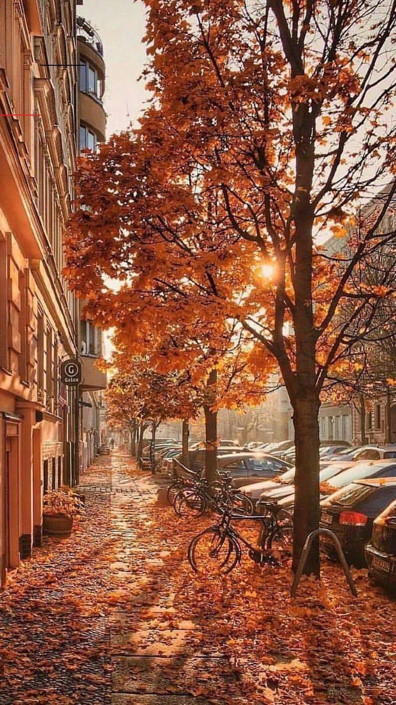 Photo Beautiful Autumn Photo Beautiful Autumn awesome