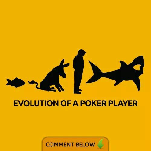 A Shark Poker Quotes Poker Poker Face