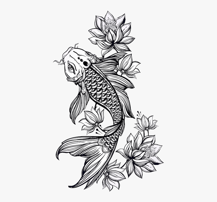 Jk Koi Koi Fish Drawing Black And White Hd Png Download Is Free Transparent Png Image To Explore More Koi Fish Drawing Koi Tattoo Design Koi Tattoo Sleeve