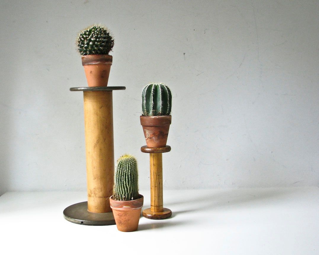 Cactus Stands using spools by BeeJayKay on Etsy