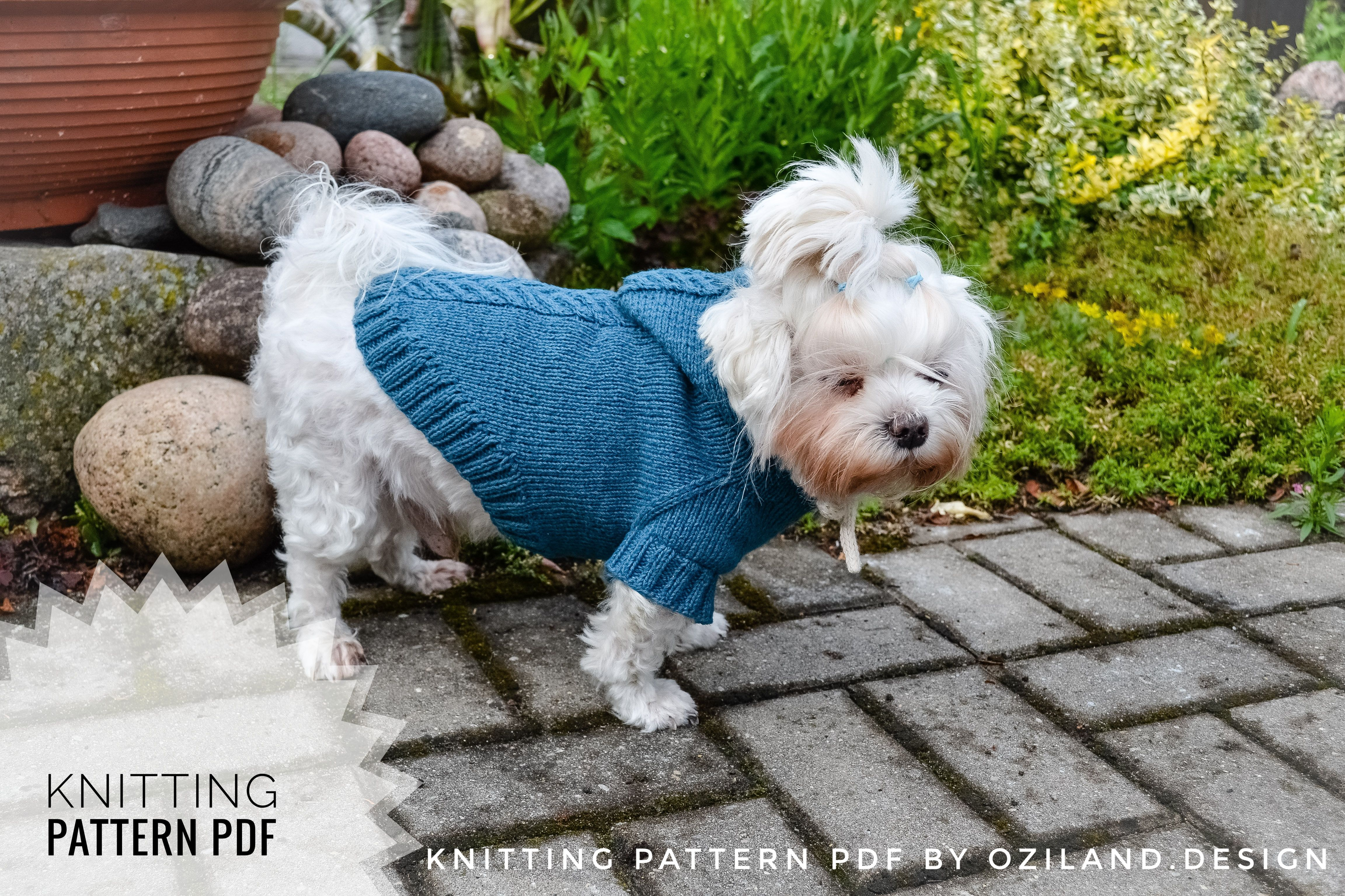 Sport Hoodie Clothes For Dog Pattern By Olga Kudrjavceva Dog