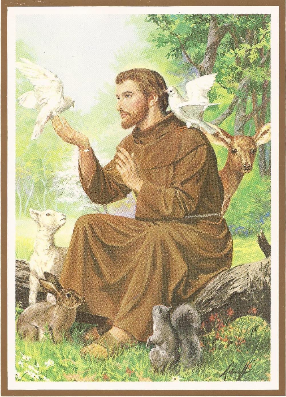 1448521792343 1000 1389 Patron Saint Of Animals St Francis Painting Illustration