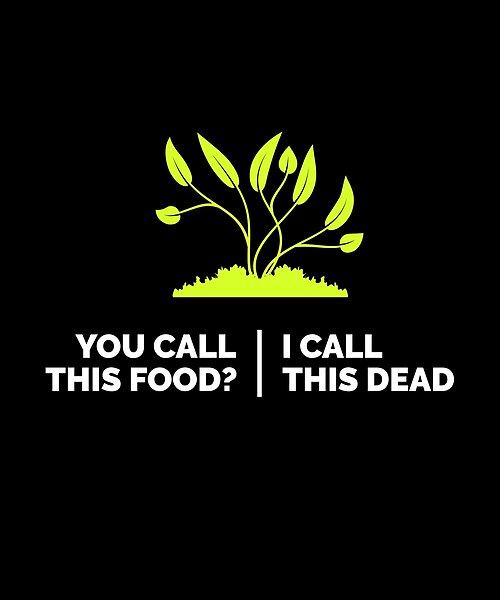 Pin On Vegan Vegetarian Funny Saying T Shirt Mug