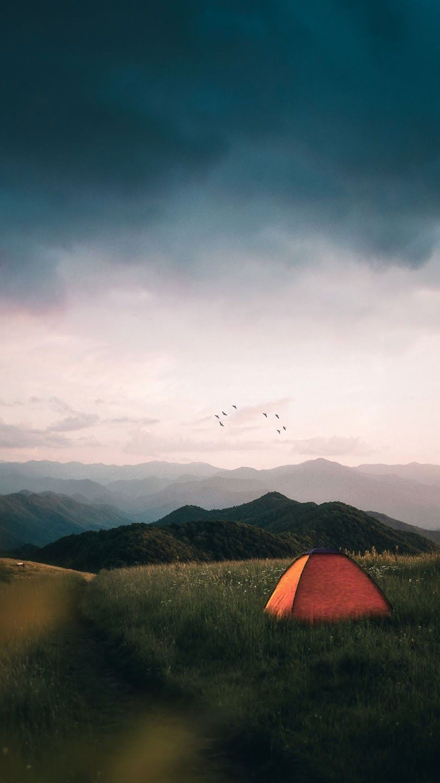 Camping Wallpaper Iphone Android Background Followme Camping Wallpaper Tent Camping Camping Aesthetic
