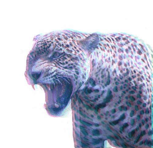 Cheetah-3D