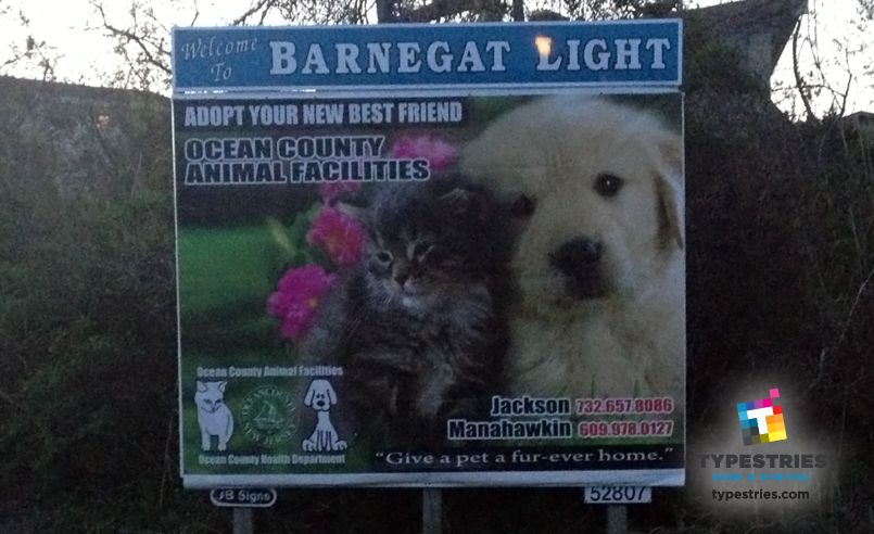 Friends of Southern Ocean County Animal Shelter BIllboard