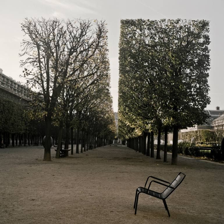 Paris, Edition of 10, Lukas Cetera