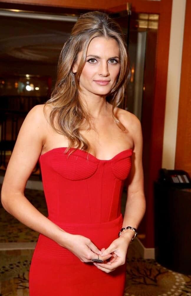 Pin by Alden Davis on Stana Katic in 2020   Stana katic