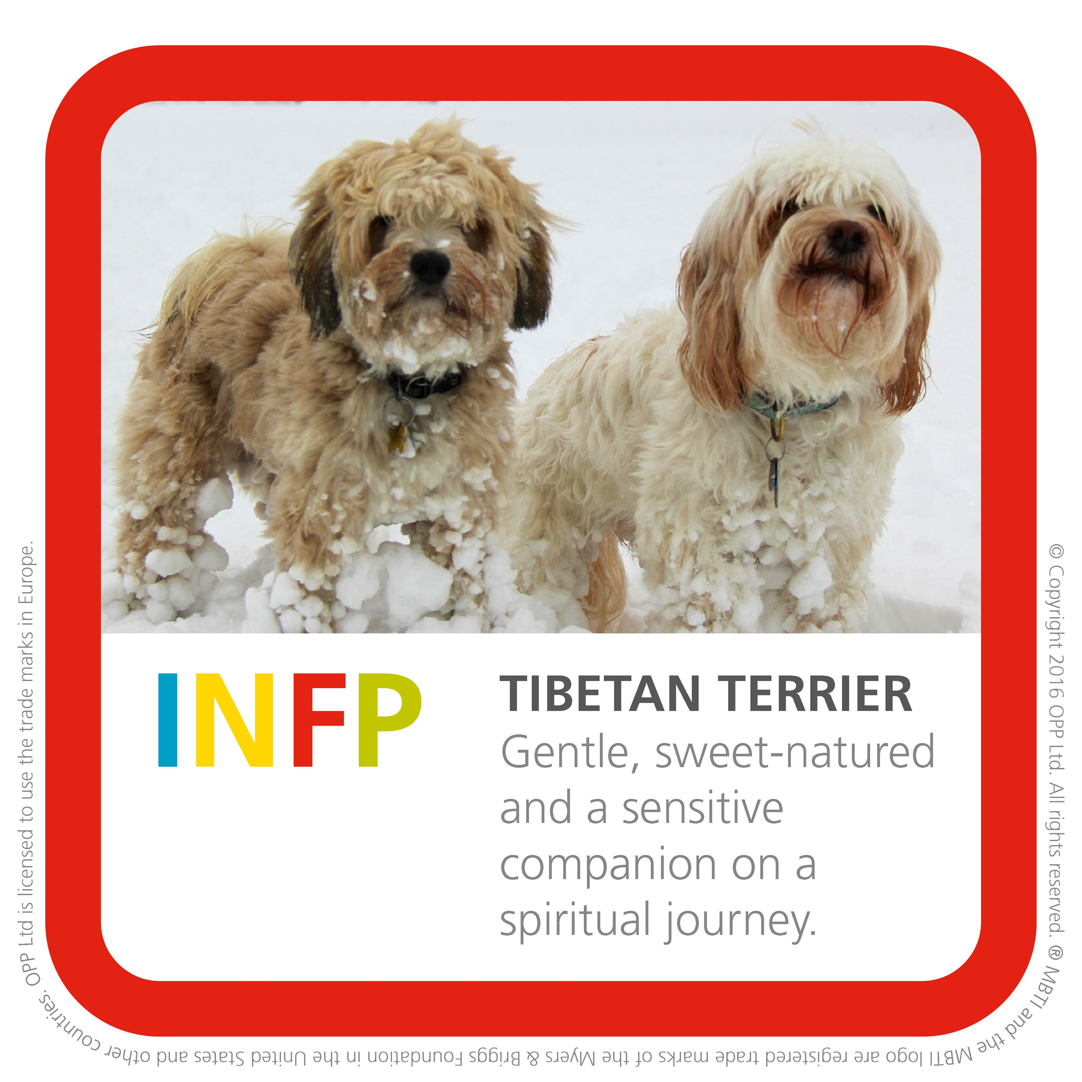 This is my Type image! Get yours at