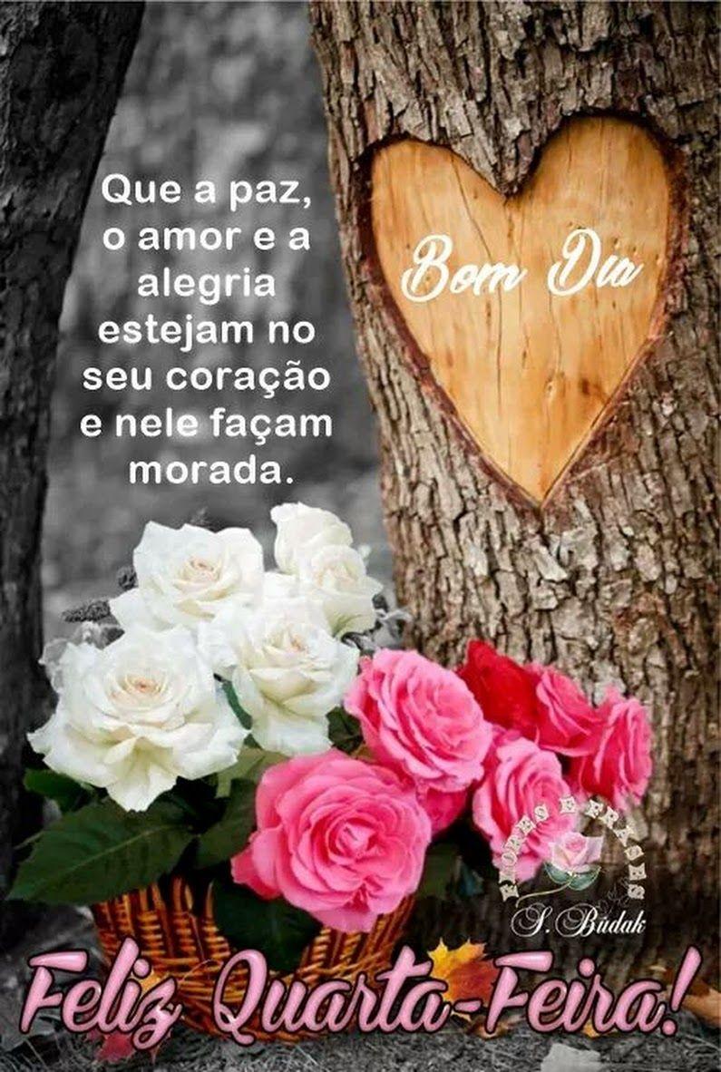 Pin De Silvaneide Silva Em Amizade Bom Dia Com Flores Belas
