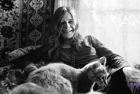 Yanis#cat
