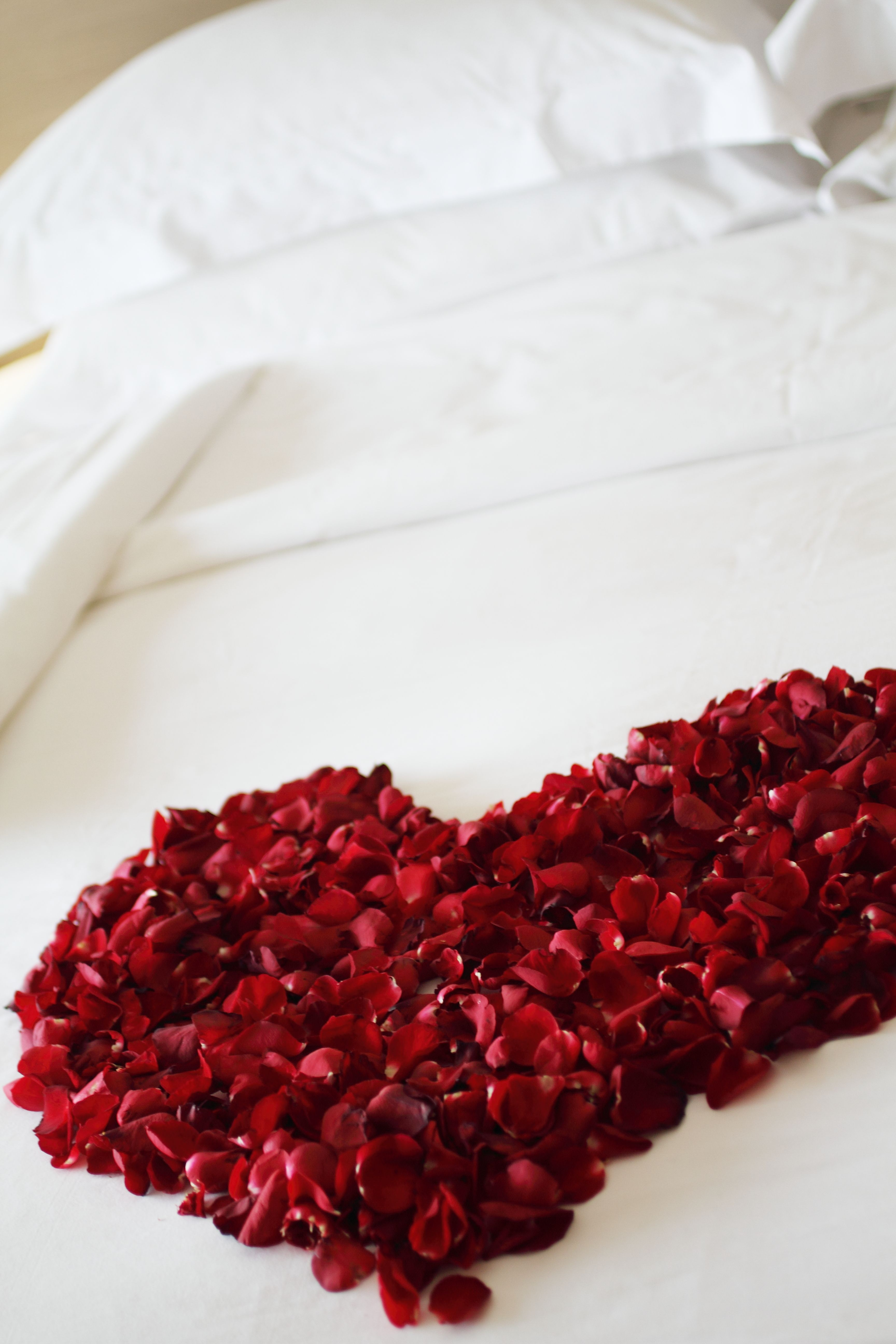 Romantic bedroom rose petals - Even More Work With Petals But Makes For A Gorgeous First Night In Your