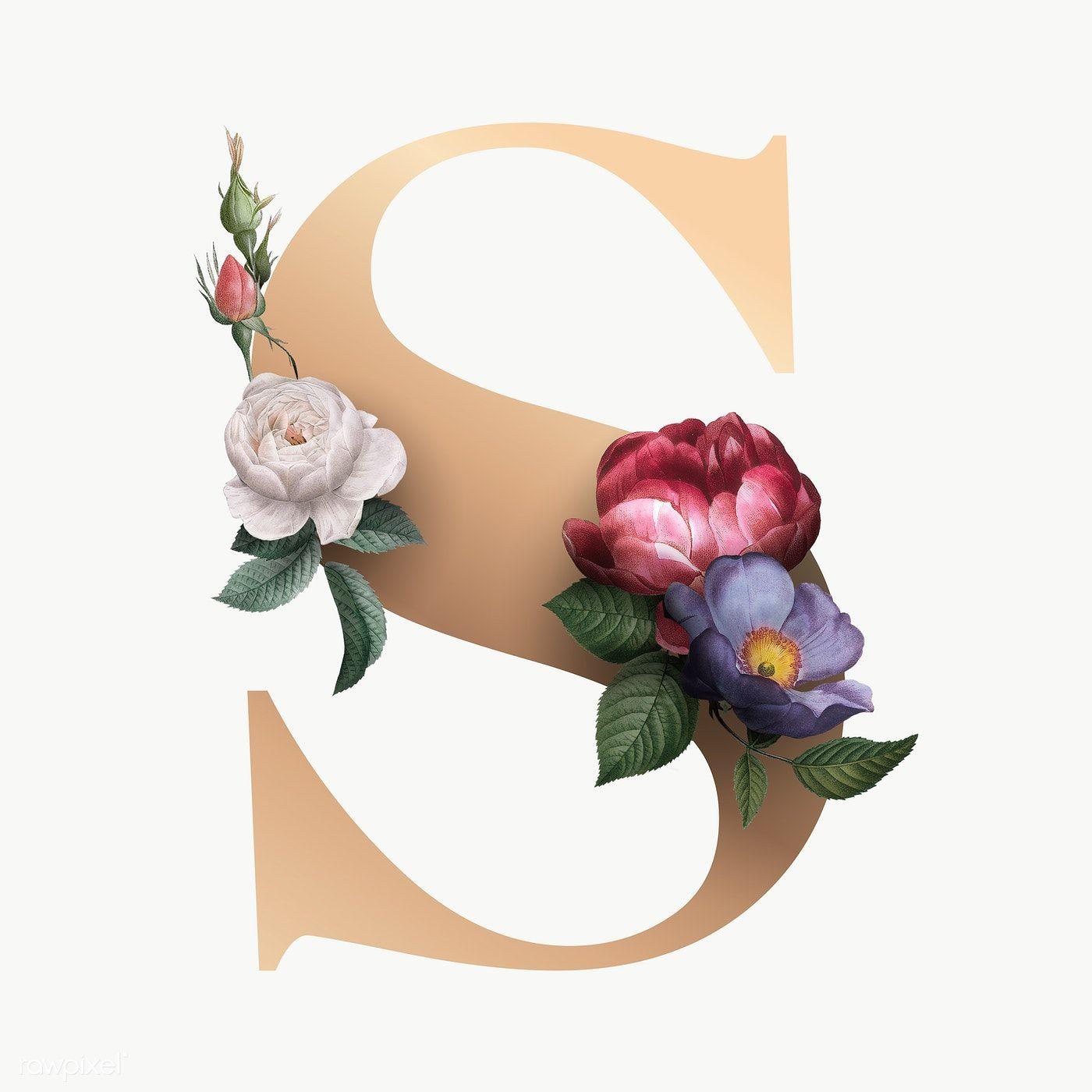 Classic And Elegant Floral Alphabet Font Letter S Transparent Png Free Image By Rawpixel Com Manota In 2020 Fonts Alphabet Lettering Fonts Lettering Alphabet Fonts