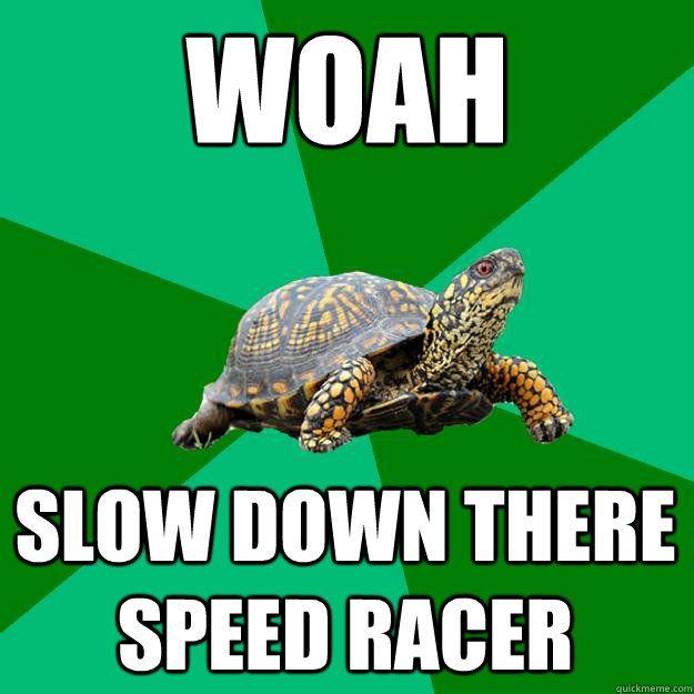 Image result for slow down meme