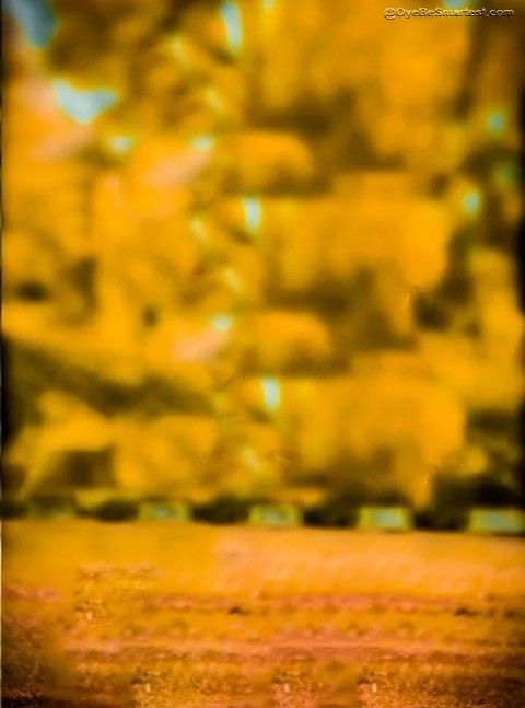 Yellow CB Editing PicsArt Background