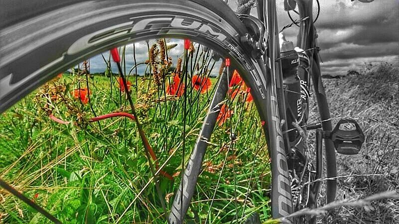 November - 'Lest we forget!' #AATR #allabouttheride #cycling #bicycling #roadcycling #mtb #rememberance #poppies #poppyflower #November11th #cycletography #snapseed #sonyxperia #Xperia