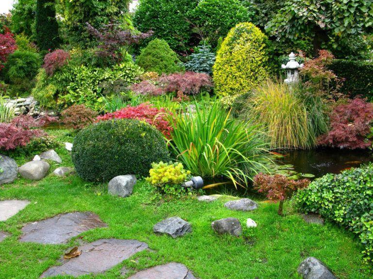 10 Fondos para jardin